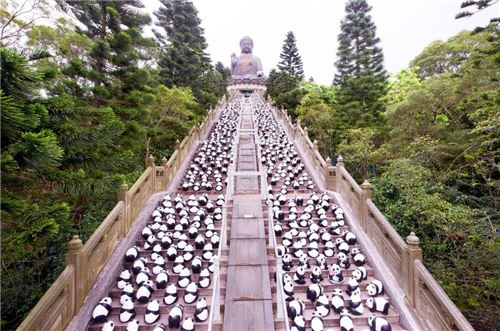 1600 Pandas at the Tian Tan Buddha
