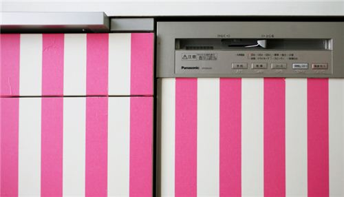 Add some colour to dishwasher or kitchen fronts